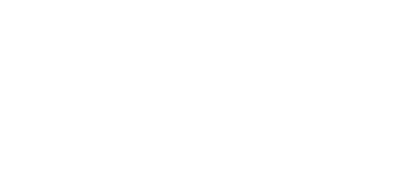 Datapress Logo